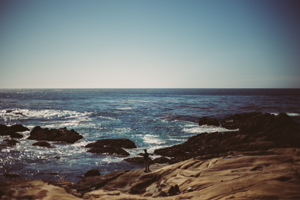 point-lobos-california-4.jpg
