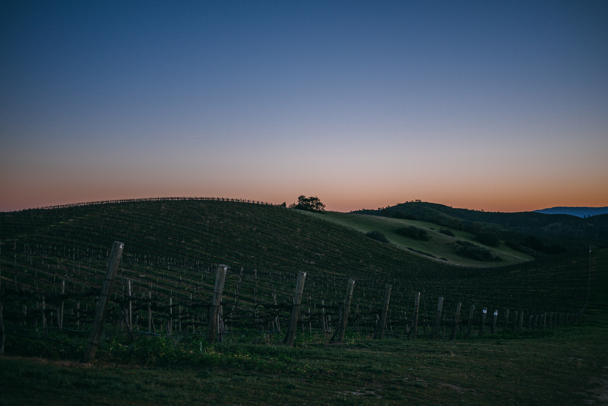 chalone-vineyards-soledad-monterey-getaway-16.jpg