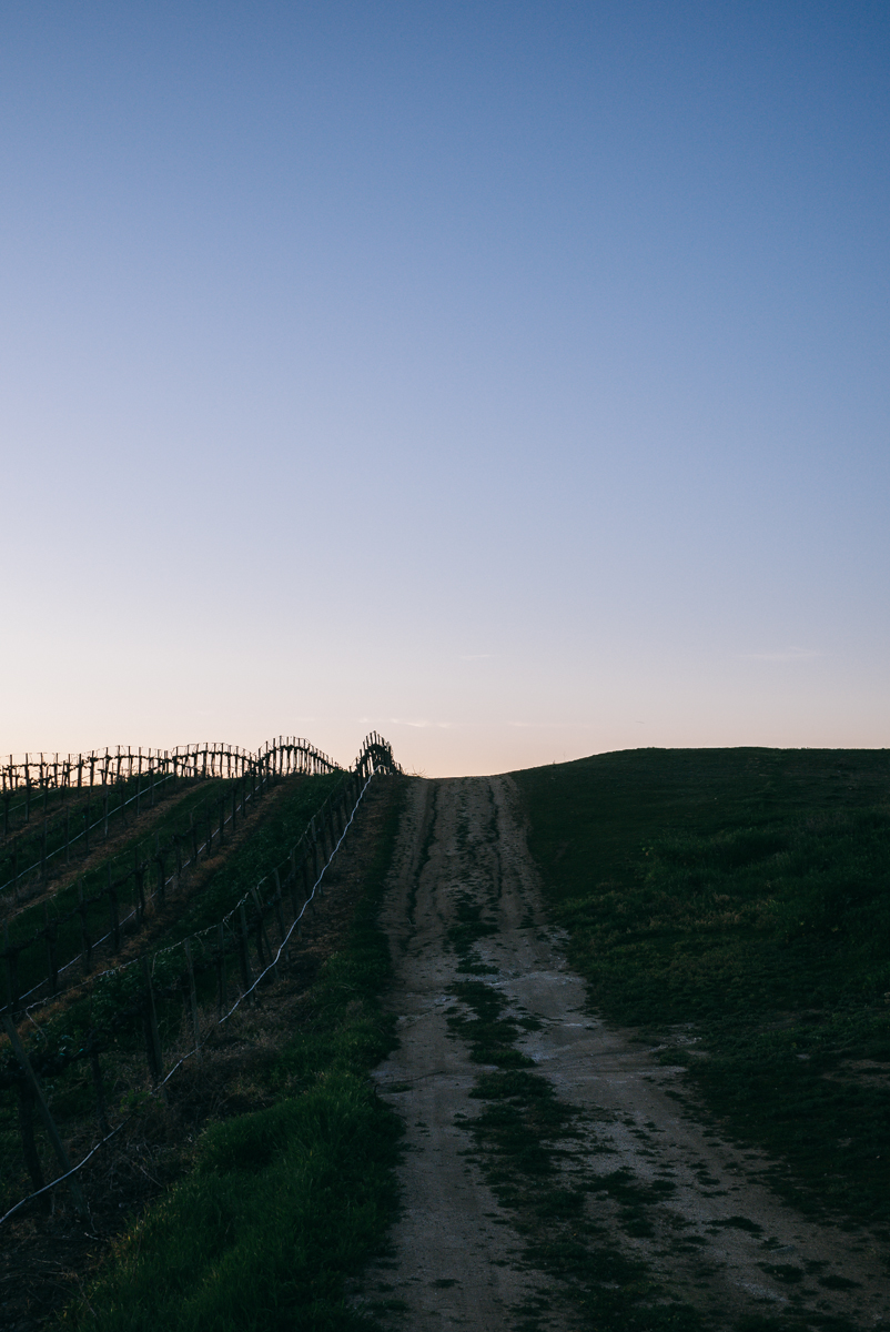 chalone-vineyards-soledad-monterey-getaway-14.jpg