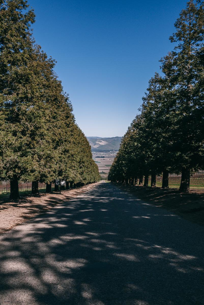 wine-country-getaway-8.jpg