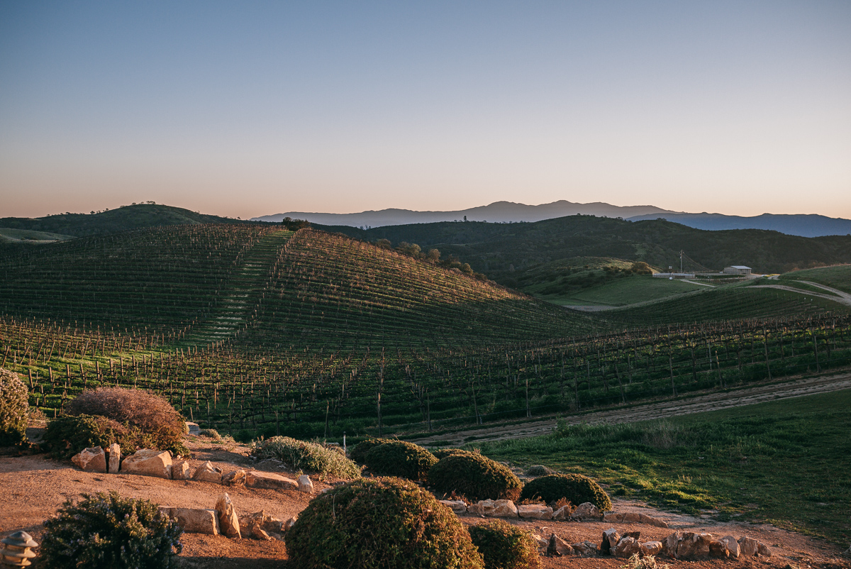 chalone-vineyards-soledad-monterey-getaway-2.jpg