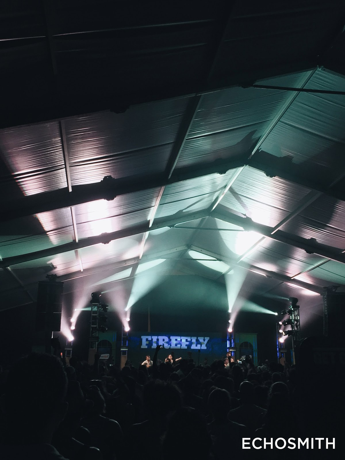 mybelonging-firefly-music-festival-2015-17.JPG