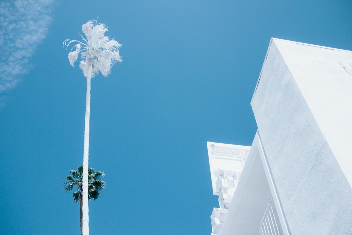 projection-la-losangeles-bates-motel-vincent-lamouroux-pleasedonotenter-16.jpg