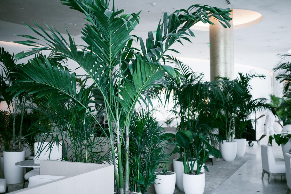 miami-travel-destination-edition-luxury-hotels-9.jpg