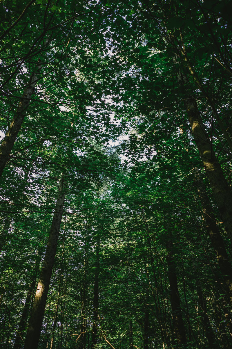 MYBELONGING-AARHUS-DENMARK-TRAVEL-PHOTOGRAPHY-3.jpg