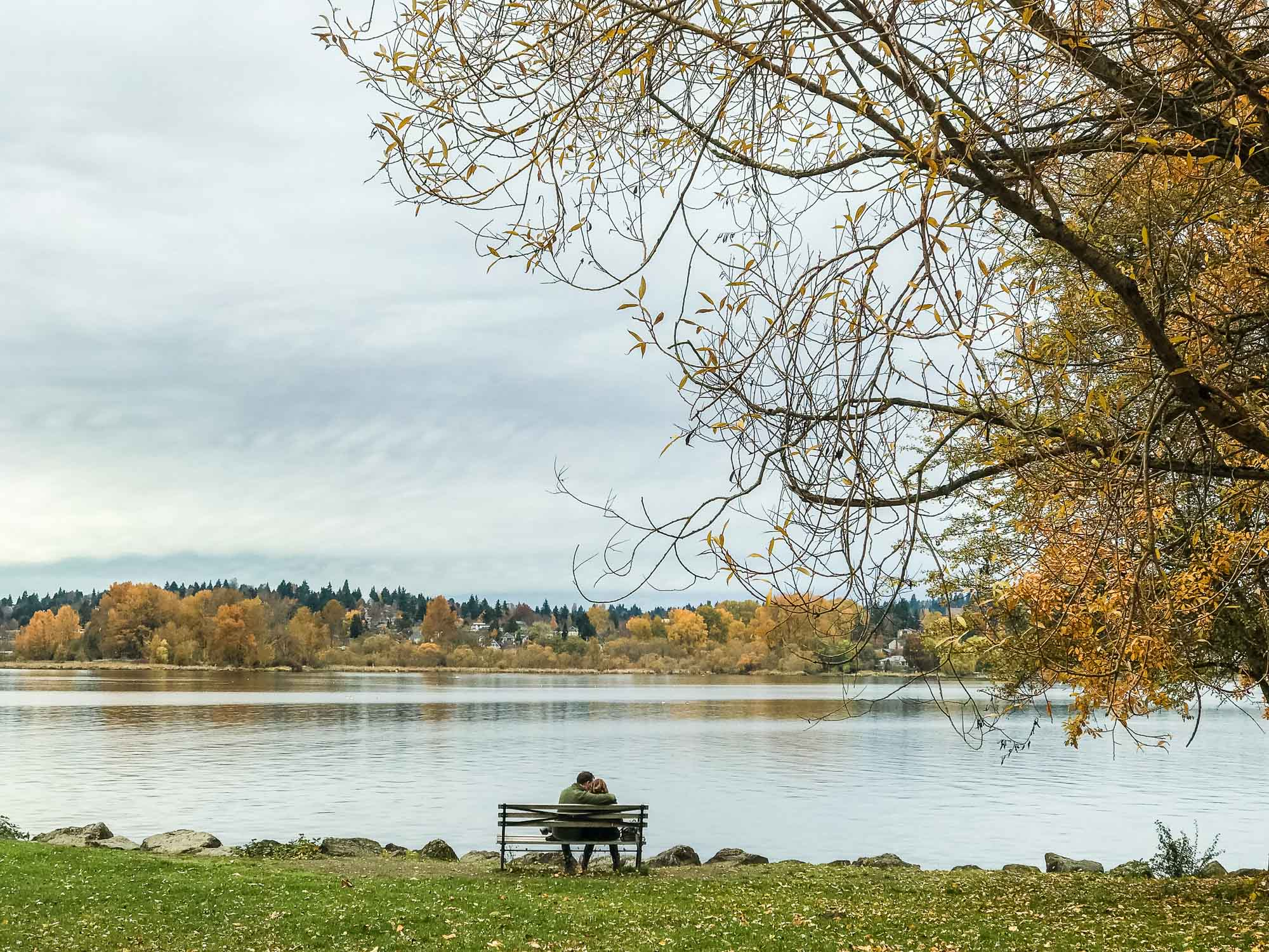 MYBELONGING-SEATTLE-CITY-GUIDE-UBER-X-TRAVEL-PHOTOGRAPHY-FOLIAGE-WASHINGTON-ARBORETUM-GASWORKS-PARK-3.jpg