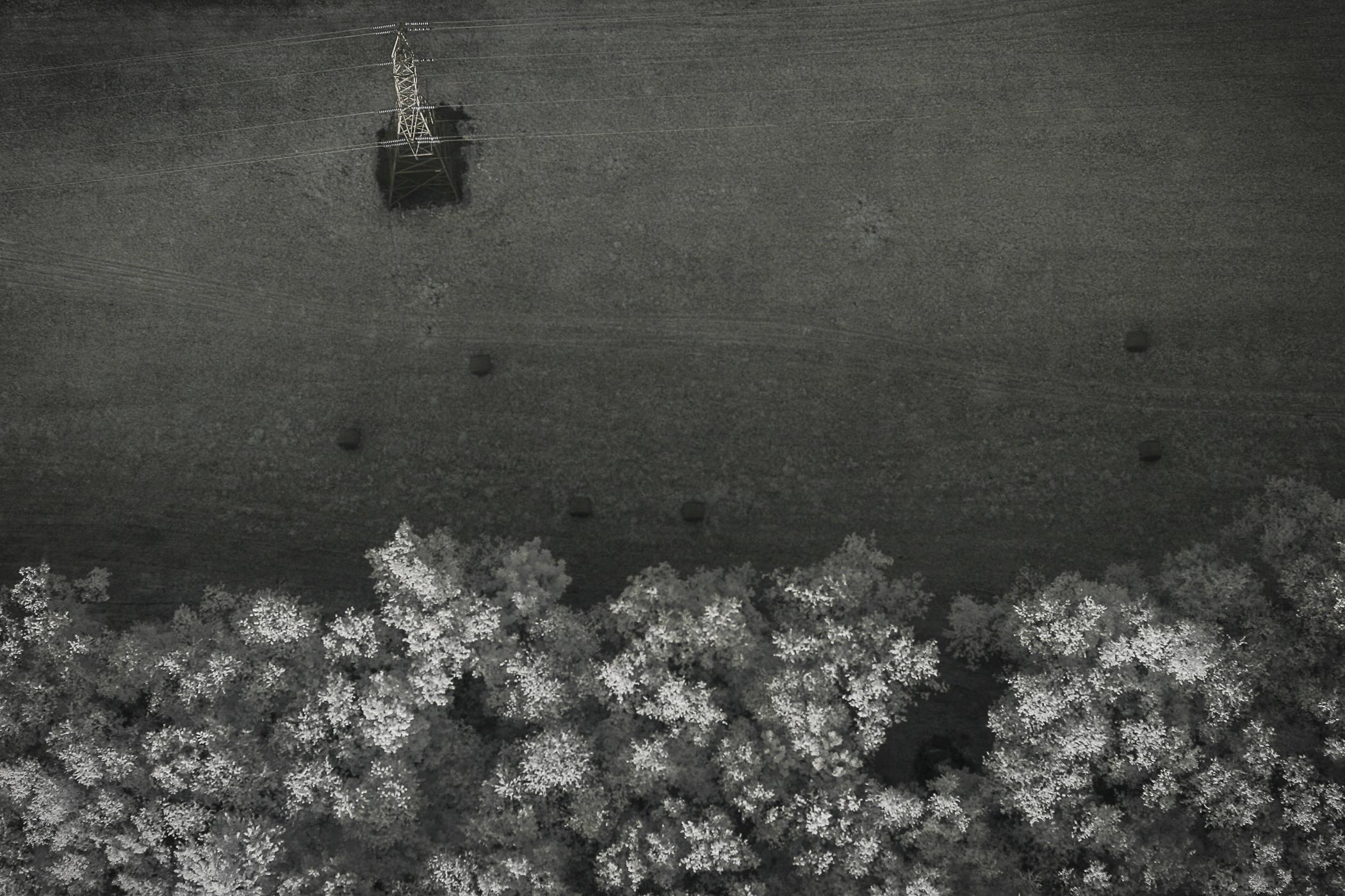 KendallInfraredAerial-11.jpg