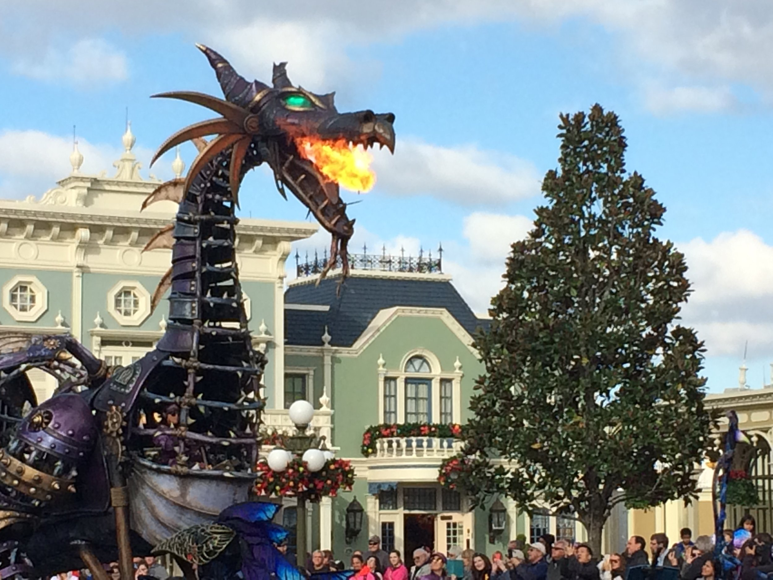 festival of fantasy dragon.jpg