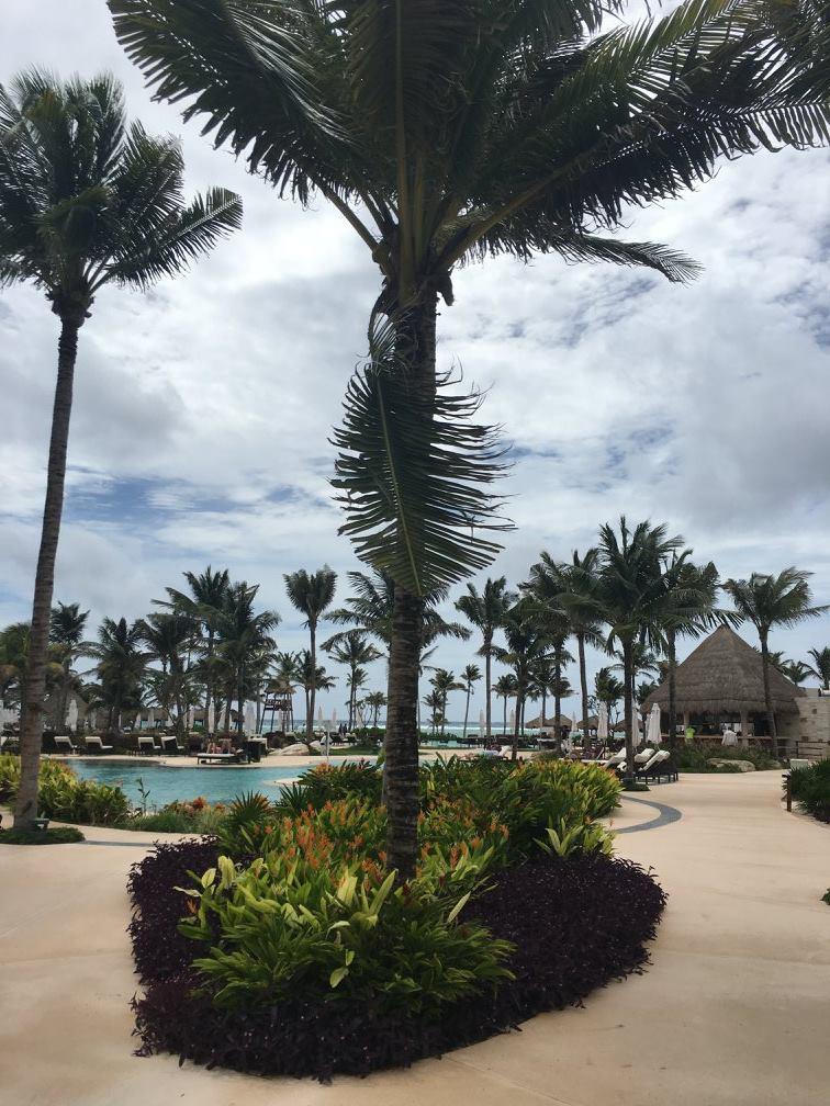 secrets akumal palms.jpg