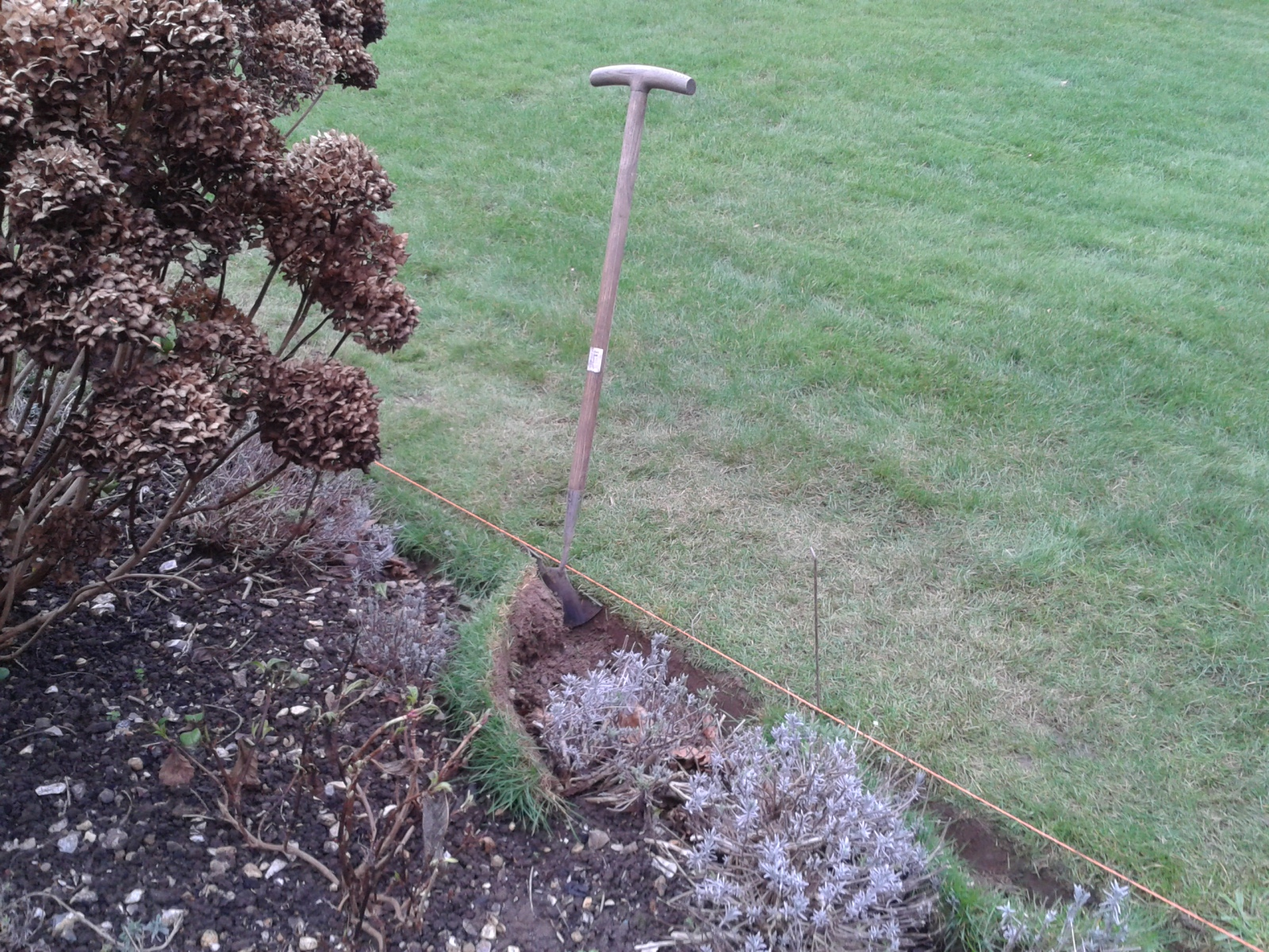 A crisp lawn edge is an important design feature