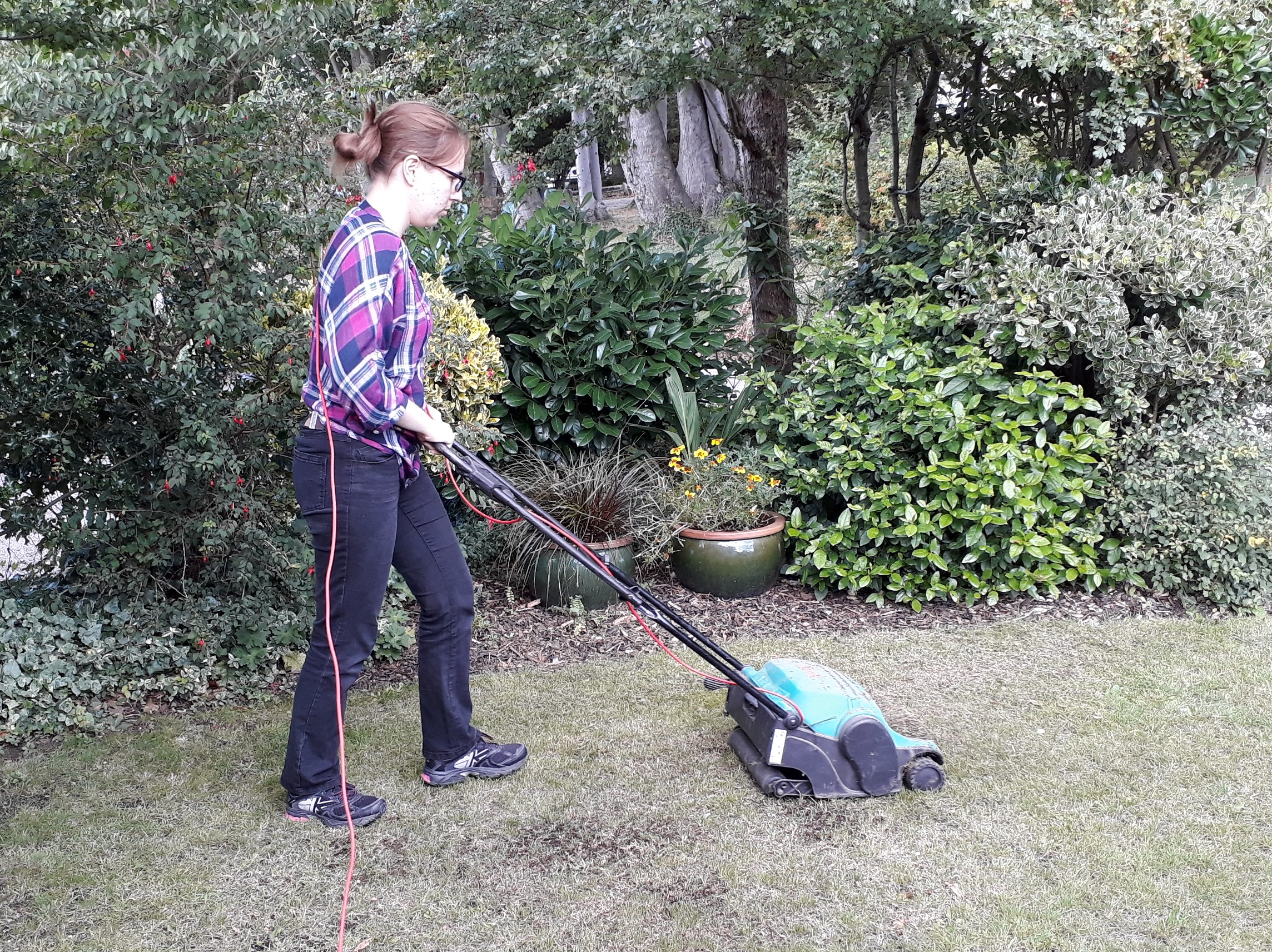 The electric lawn rake can be used with or without its collecting box