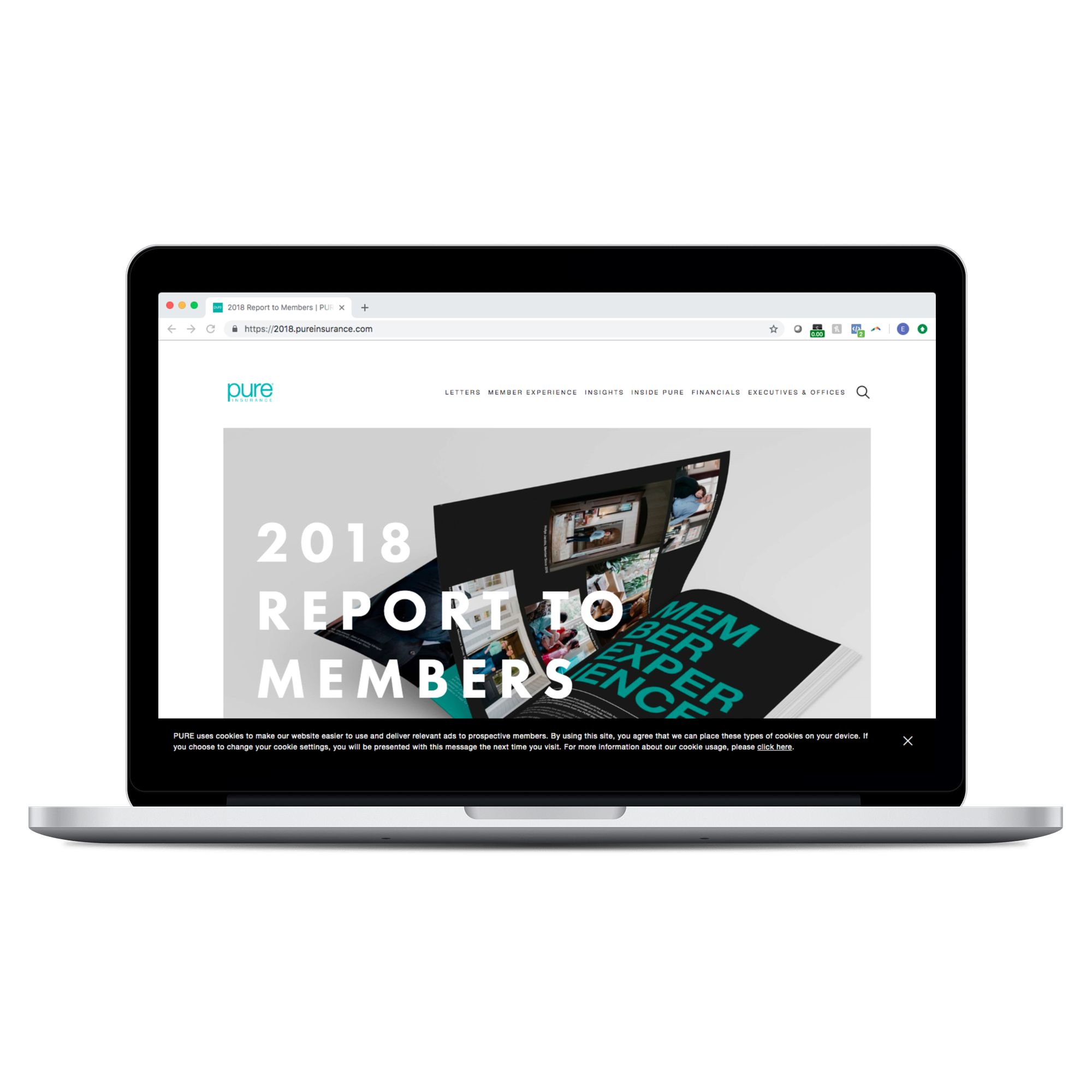 Portfolio_2018 Report to Members_macbookpro13_front 2.png