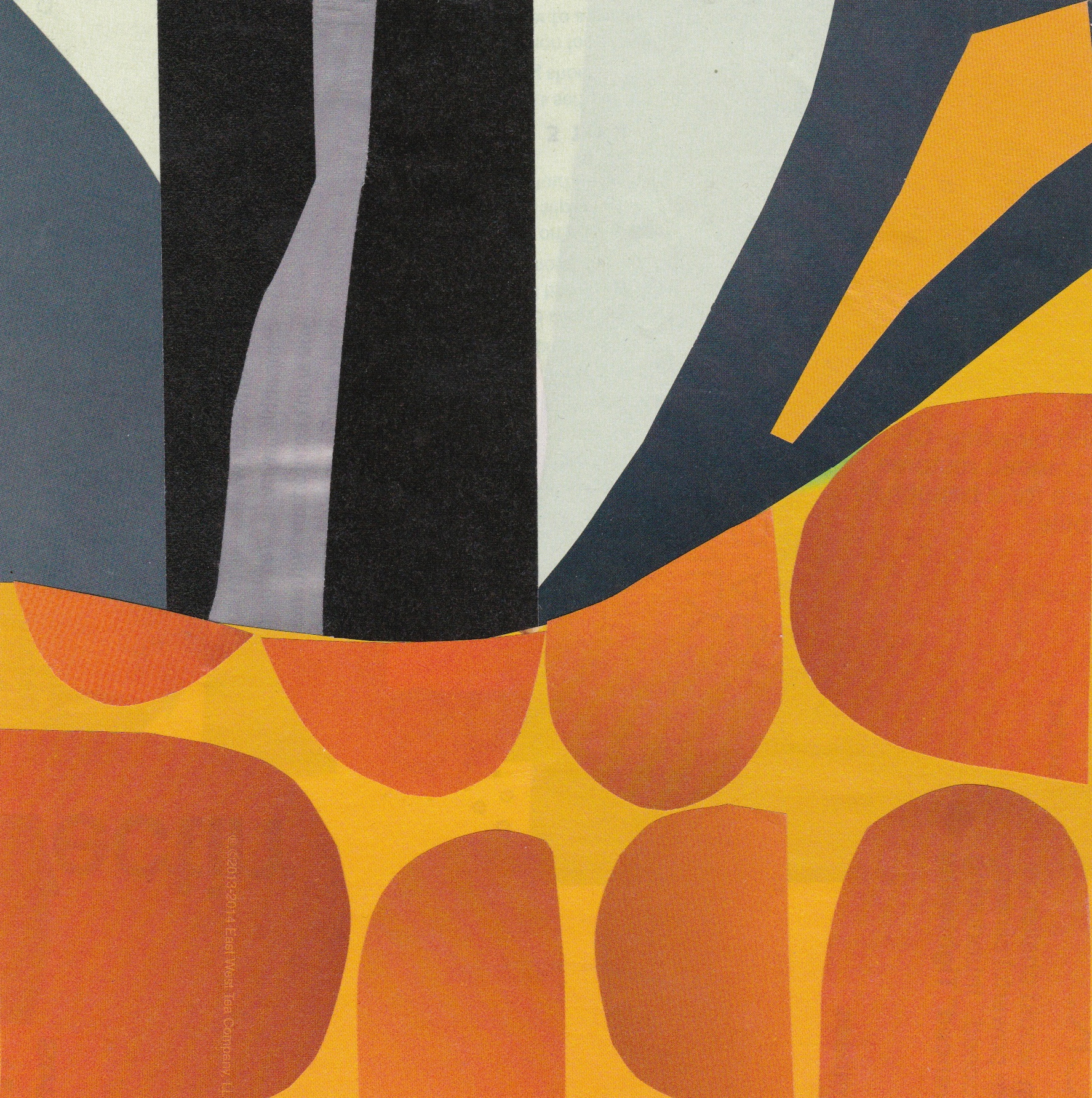 mag collage- orange dots.jpeg