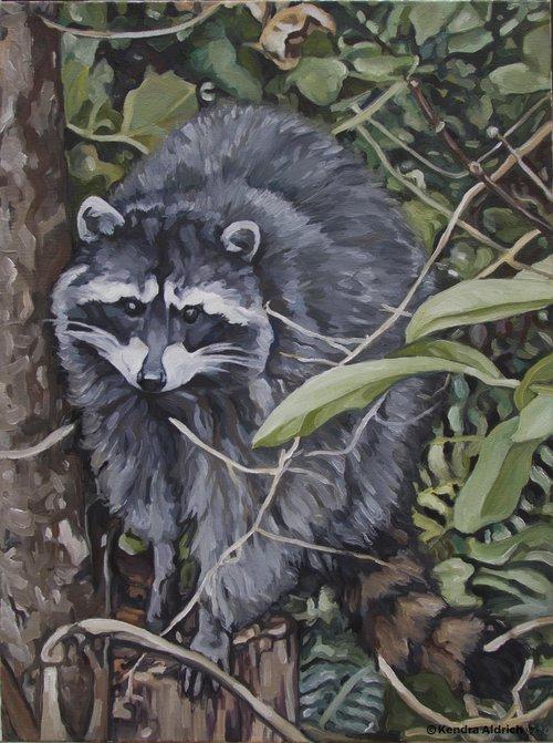 Raccoon+Copyright.jpg