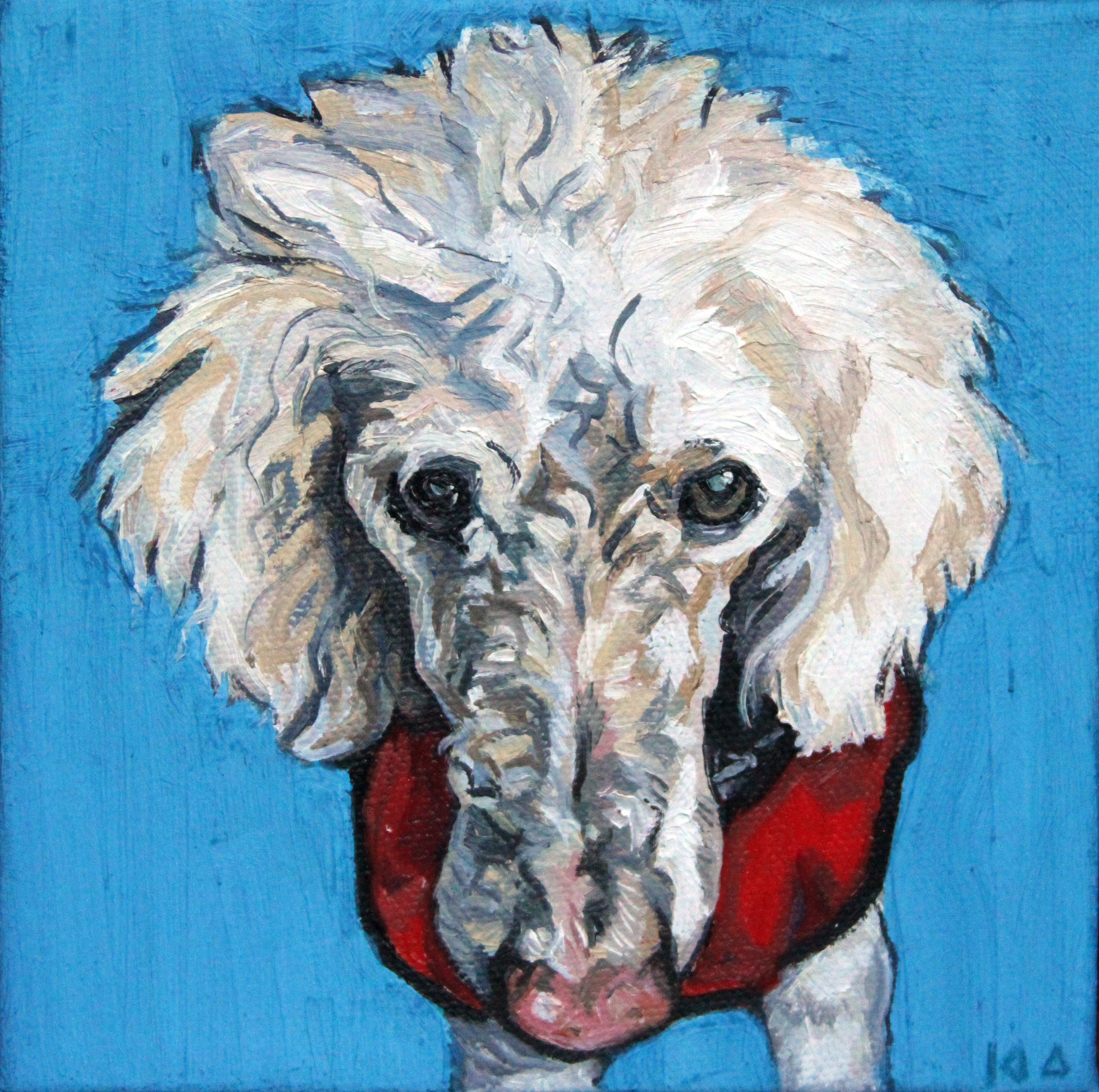 Buddy, Oil on Canvas, 6x6