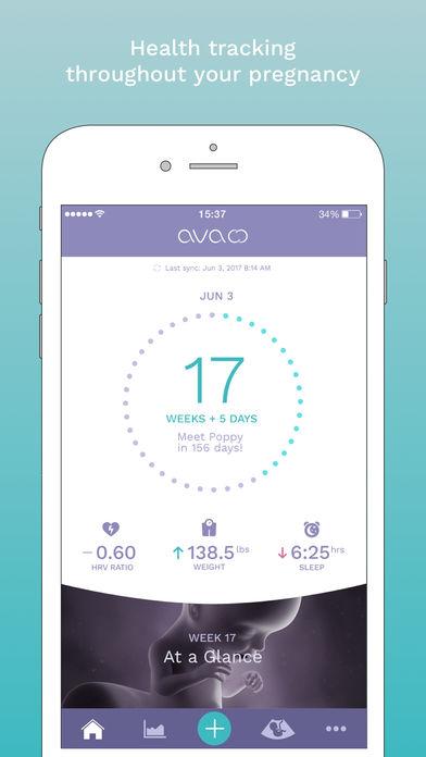 Ava interface 3.jpg