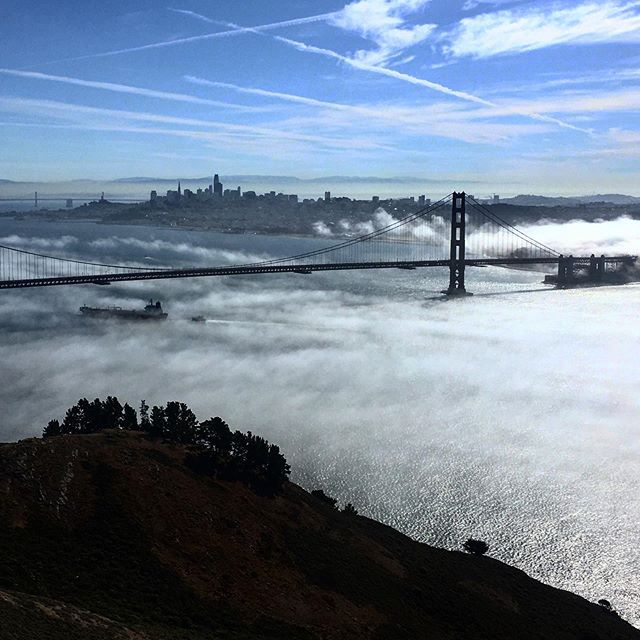 The fog yesterday was incredibly dramatic from Hawk Hill. I played with filters here a bit to adjust for the glare - sometimes a scene is just too big for a smartphone camera. You gotta come see it for yourself!