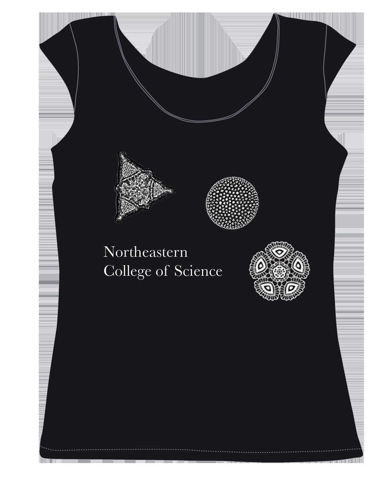 diatoms lacey option copy_sm.png