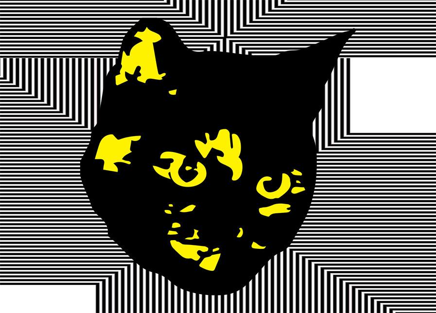 Boxy Cat_.jpg