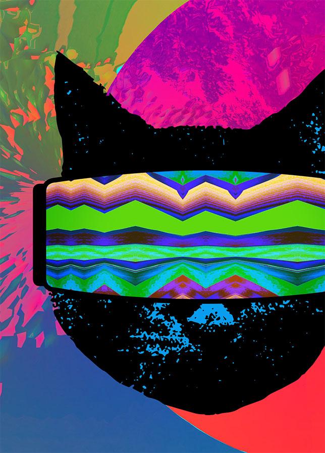 Planetary Cat_.jpg