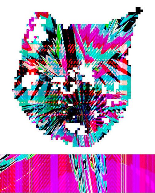 IMG_0016_z.jpg