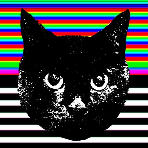 z_Packing Tape_Darla.jpg