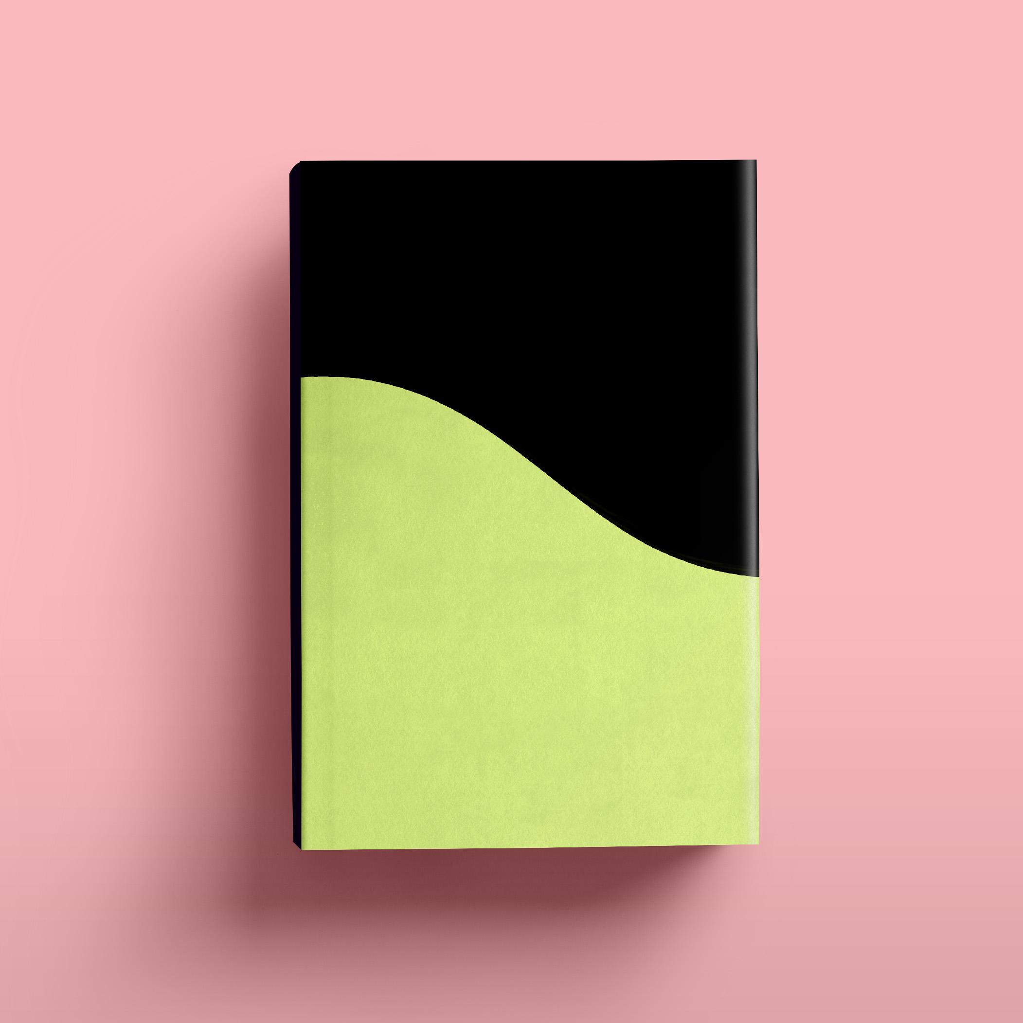 Book13d.jpg