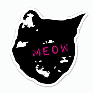 Lola meow.jpg