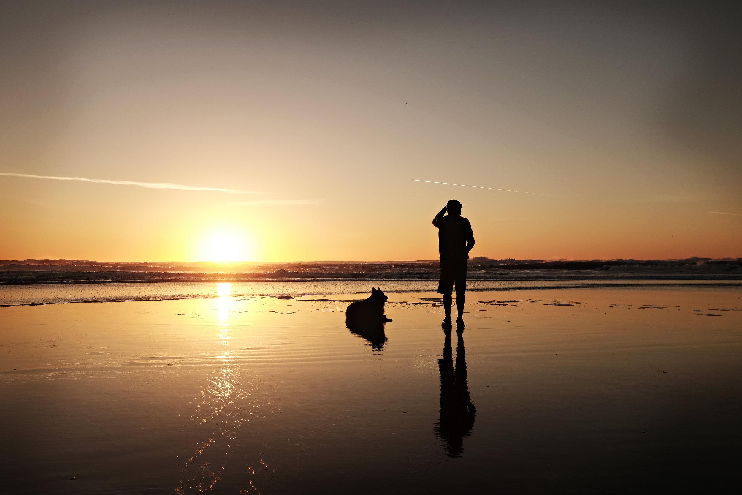 sunsetwdog_2.jpg