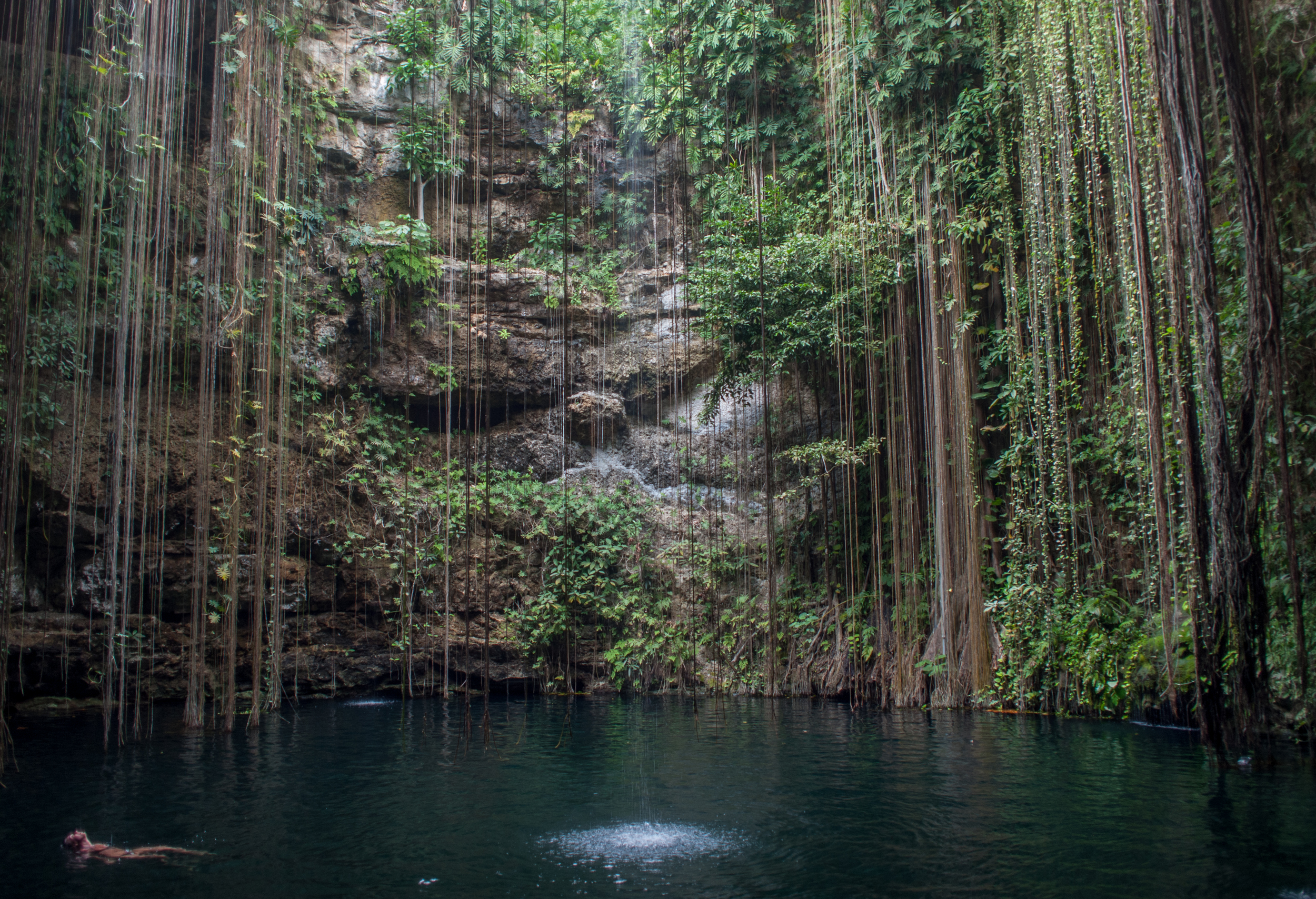 CEL_SHX_Mexico_Cenote Ik Kil near Chichen Itza.jpg