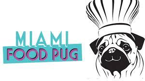 Miami Food Pug.jpg
