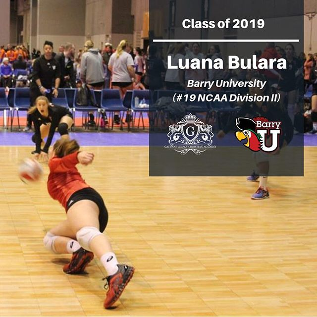 Class of 2019–  3 players received athletic scholarships and 2 will go on to study in the USA! Congratulations, ladies🦁🏐❤️ #glca #lions #gatewayacademy #c2vbc #gatewaysportsacademy #clubseason #clubvolleyball #c2volleyball #usavolleyball #cultivatingchampions #girlsvolleyball #volleyball #internationalvb #usavolleyball #jvavolleyball #usavb #thegrind #workhard #training #c2vbc #c2vbfam #gatewayvbfamily #volleyballfamily #lionsvb #voleibrasil #voleibol #stl #stlouis #stlsports