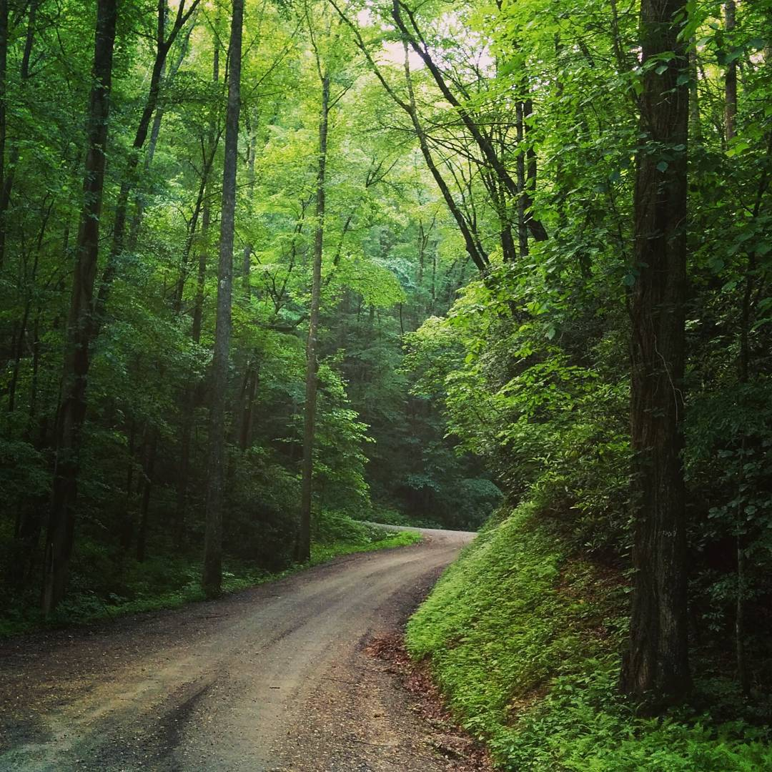 On some maps it's Maple Grove Church Rd. , but it will always be Maple Sally to us. Our founder story starts here, on the ups and downs, twists and turns of Maple Sally Rd. In the Wilson's Creek Gorge of Western NC. (at Maple Grove Baptist Church)
