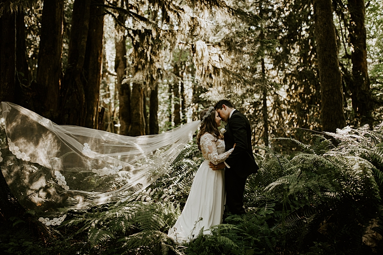 The McLachlans - Sunshine Coast Wedding Photographers - Taylor and Aurora-372.jpg