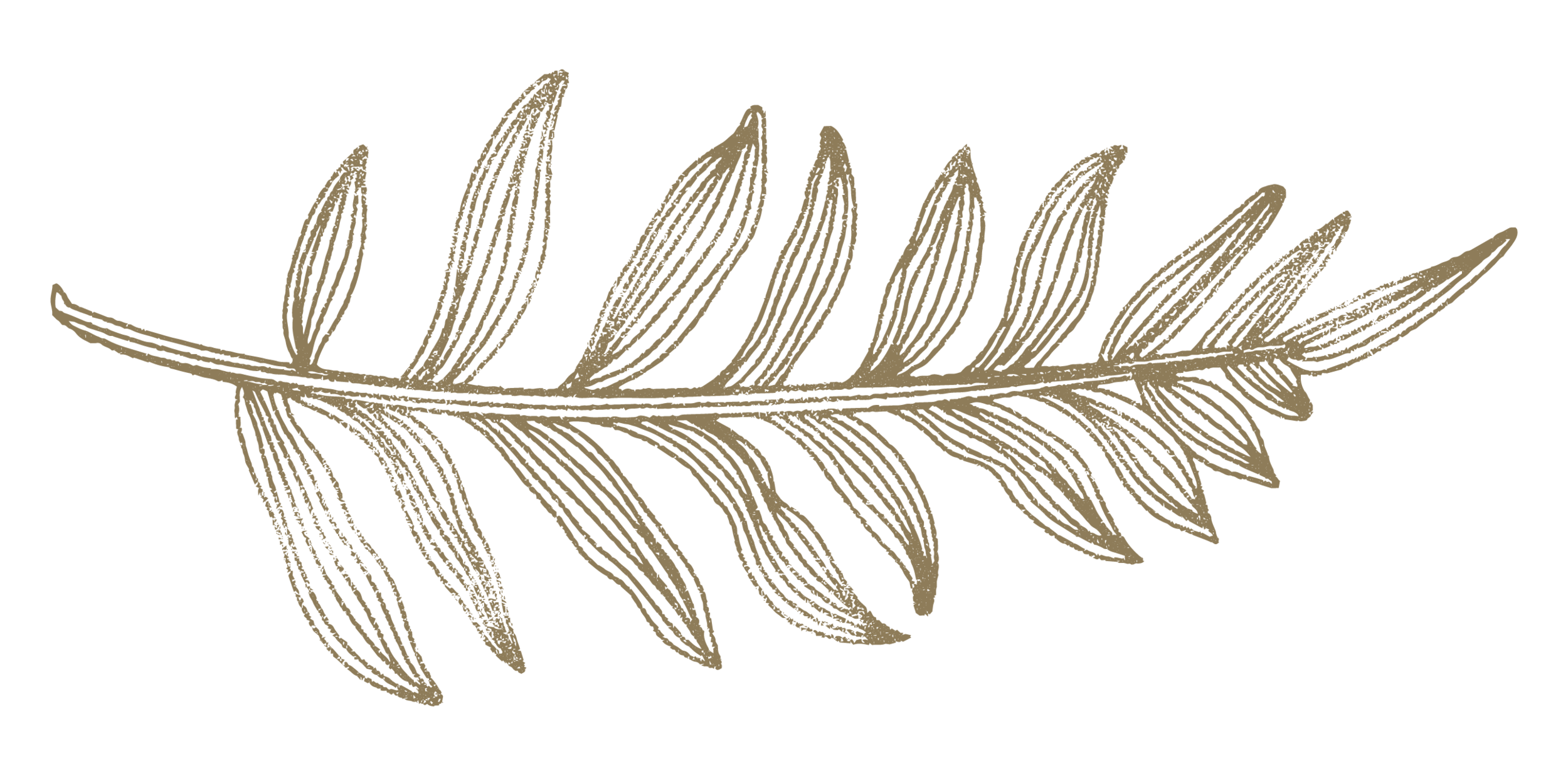 leaf-04.png