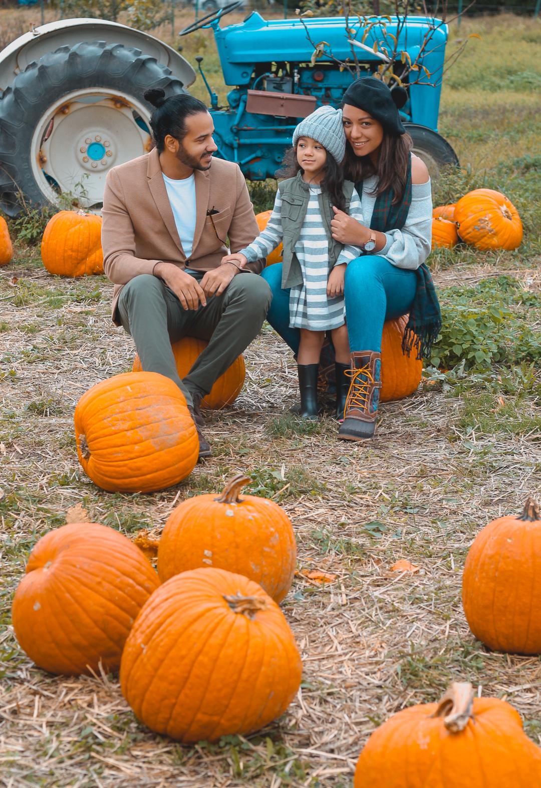 Pumpkin Picking-5.jpg