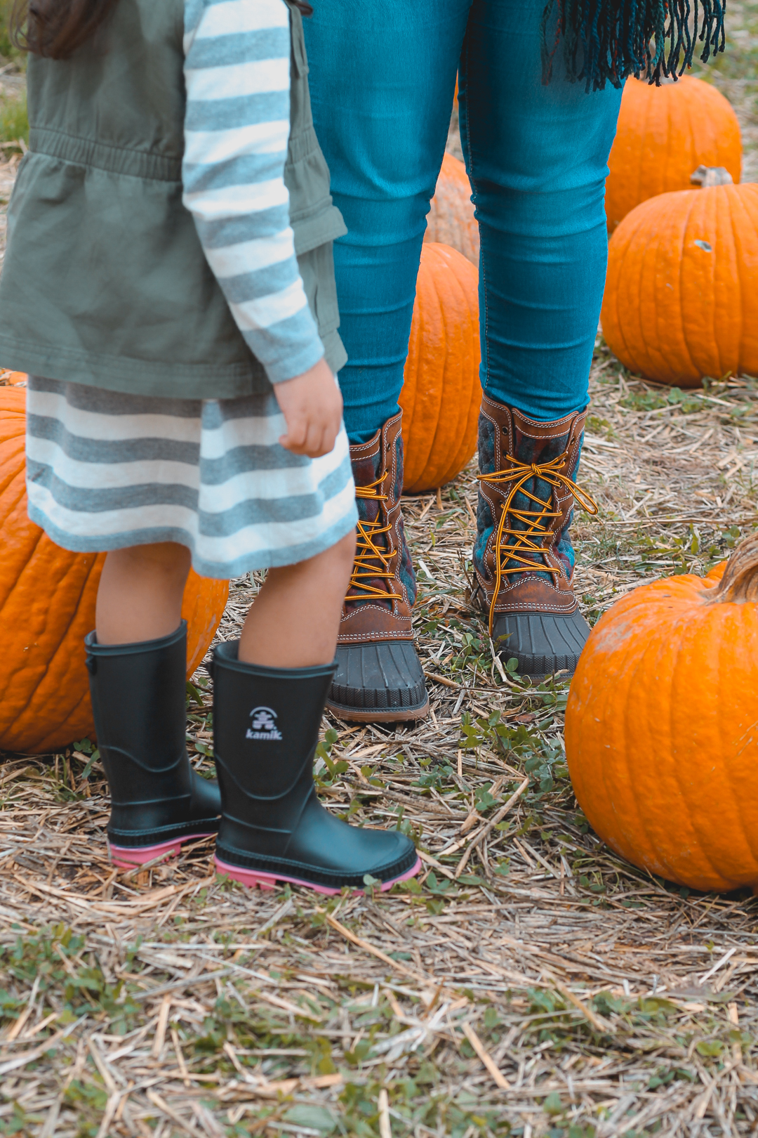 Pumpkin Picking-3.jpg