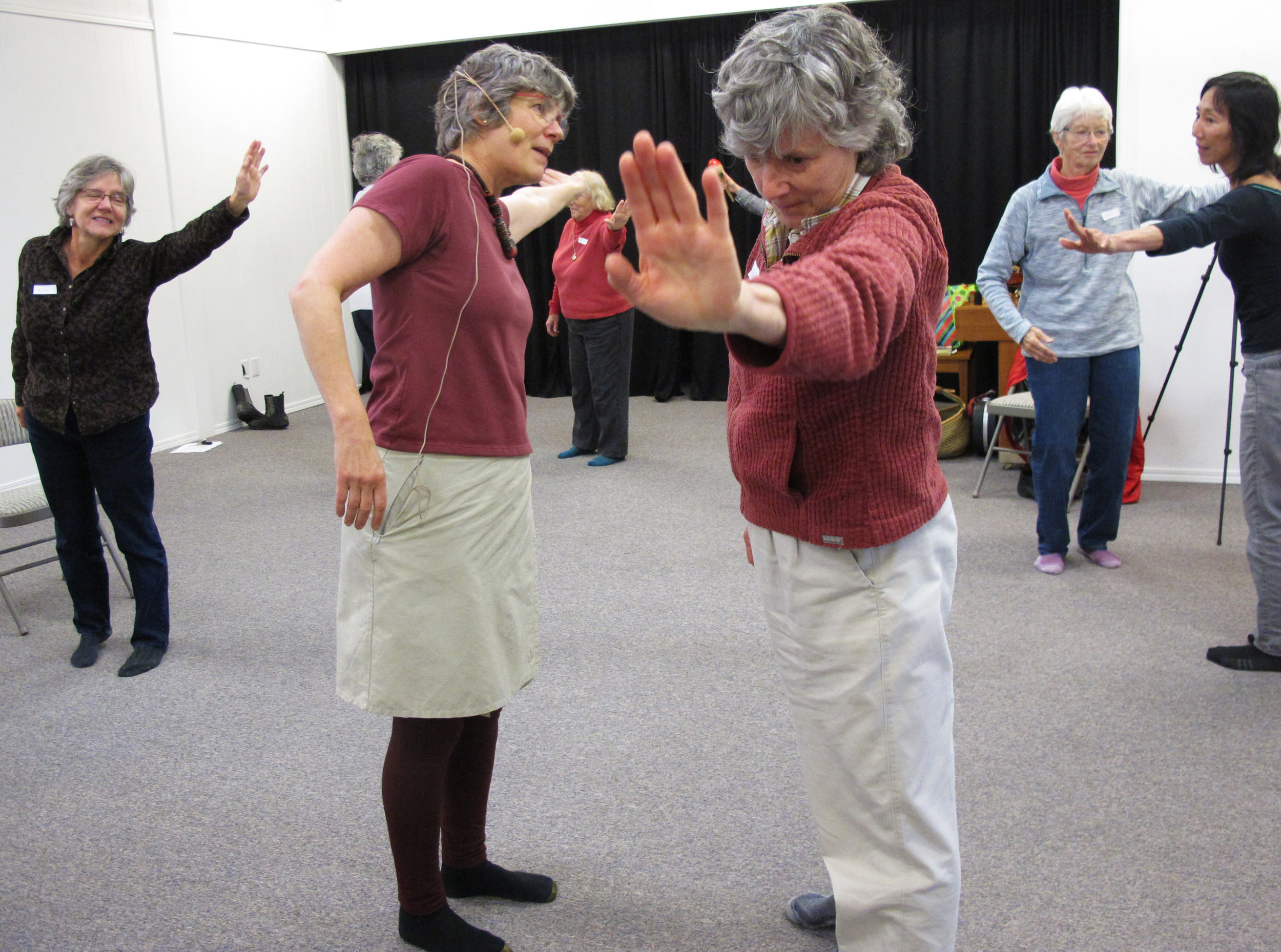 Instructors Dotti Harness-Foster and Cathy Stingley demonstrating movements. Thank you Christina Whitney for the photos.