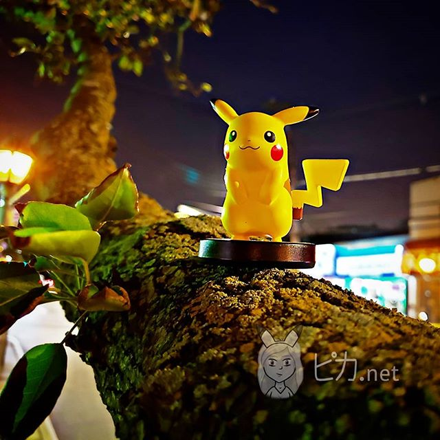🍁🍁🍁 Autumn is FINALLY here!!! How is everyone doing today?  Also...for those interested...I will be working most of next week on continuing my operations with @gxprojext so I hope to unveil what I've been working so hard on suuuuuper soon! . #pikadotnet #tree #autumn #fall #evening #saturdayevening #pika #pikachu #amiibo #pokemon #shoutout #gamergirl #gamer #nintendo #nyc #pikapickme #大声で叫ぶ #ピカ #ピカチュウ #アミーボ #ポケモン