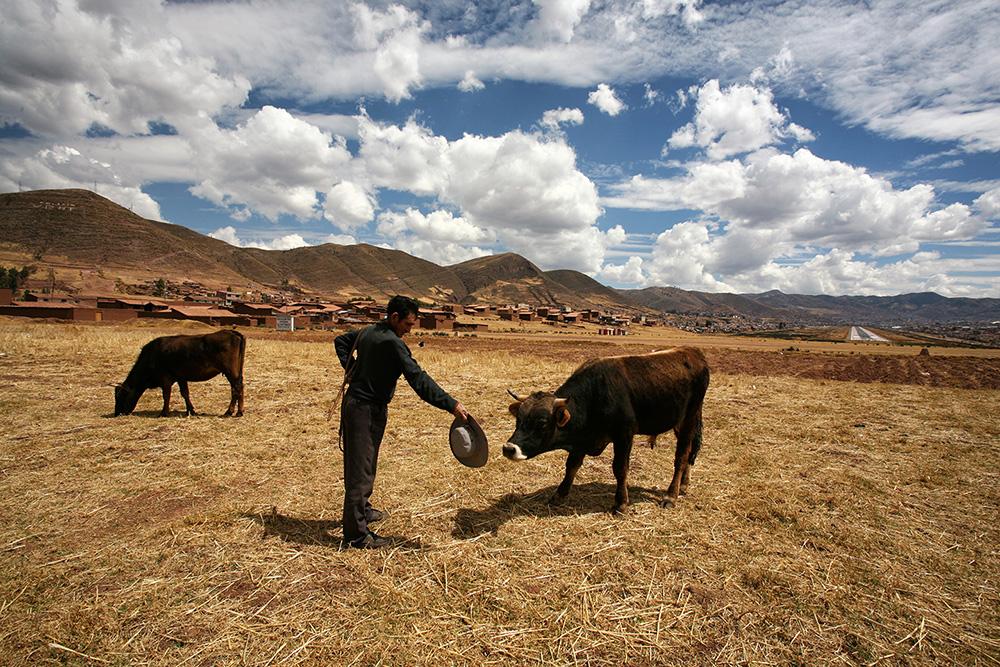 Arrive in Cusco-0681.jpg