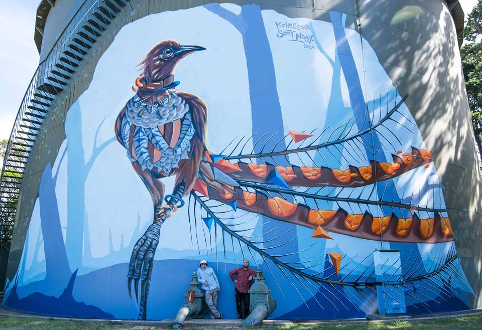 Wentworthfalls Lyrebird