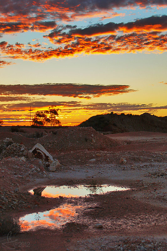 Sunset Puddles.jpg