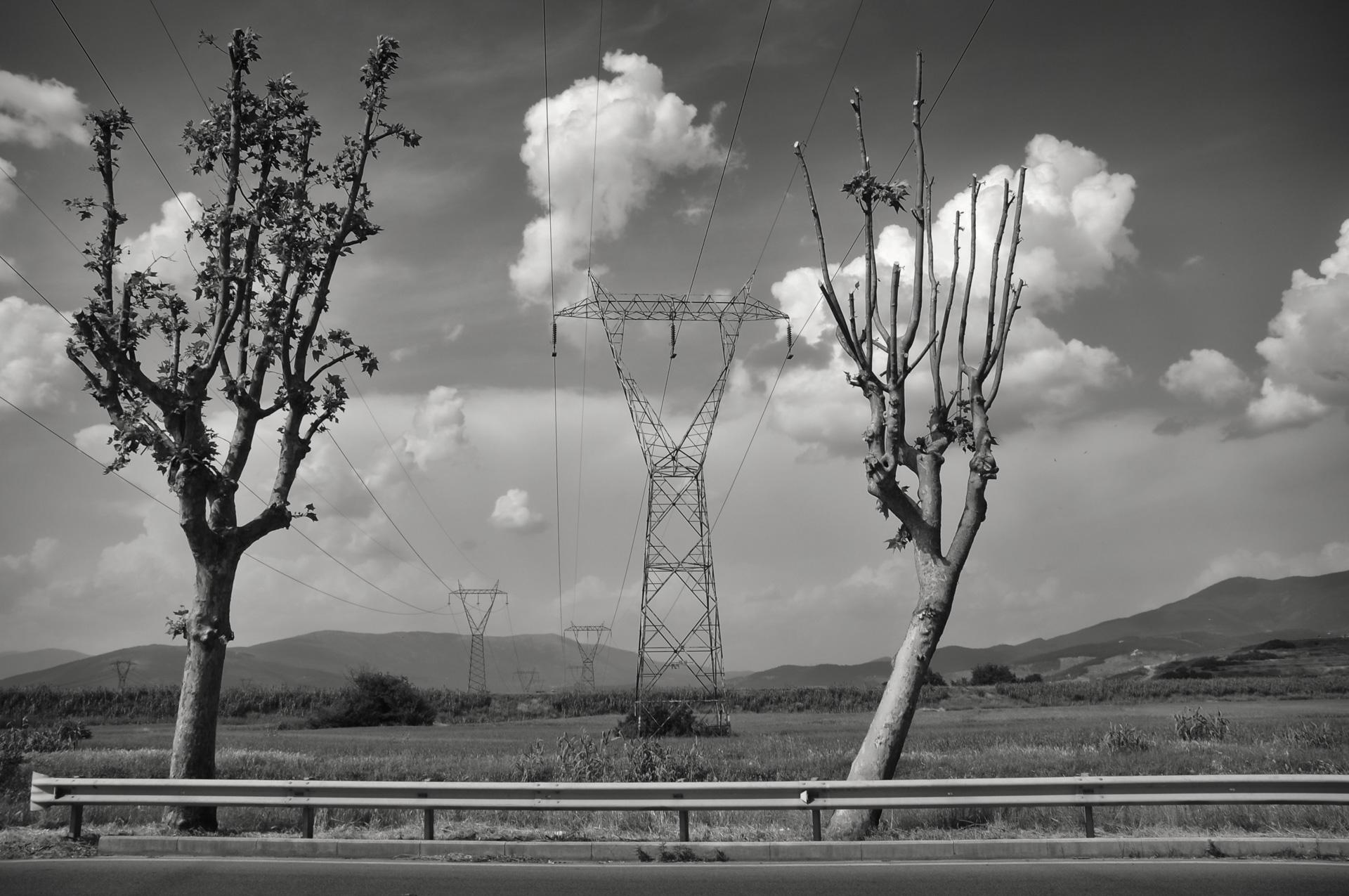 Campi Bisenzio, 2010