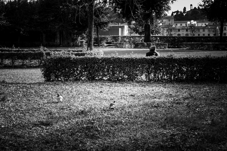 fotografia di Carlo Zei