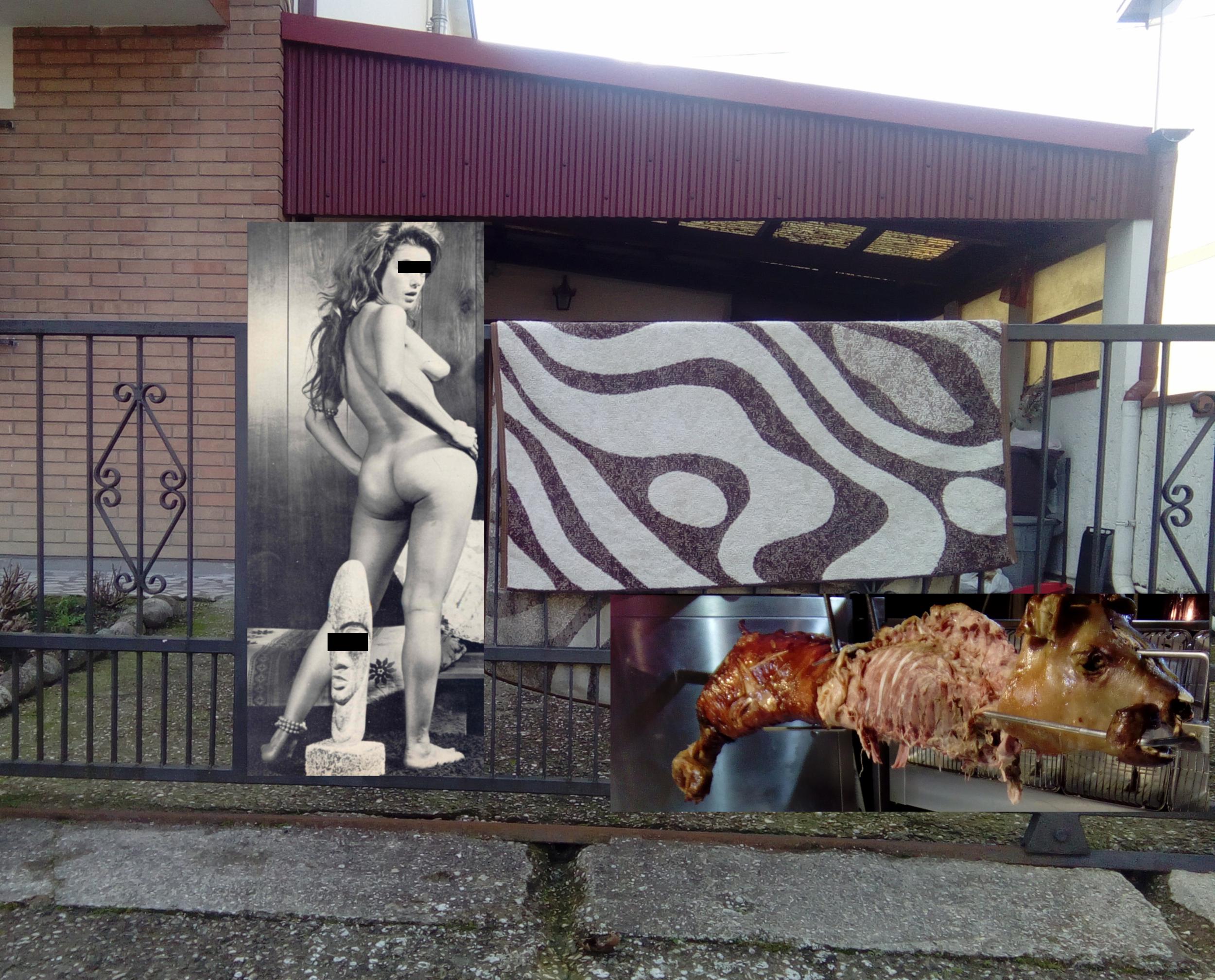 zebra rug and idol babe.png