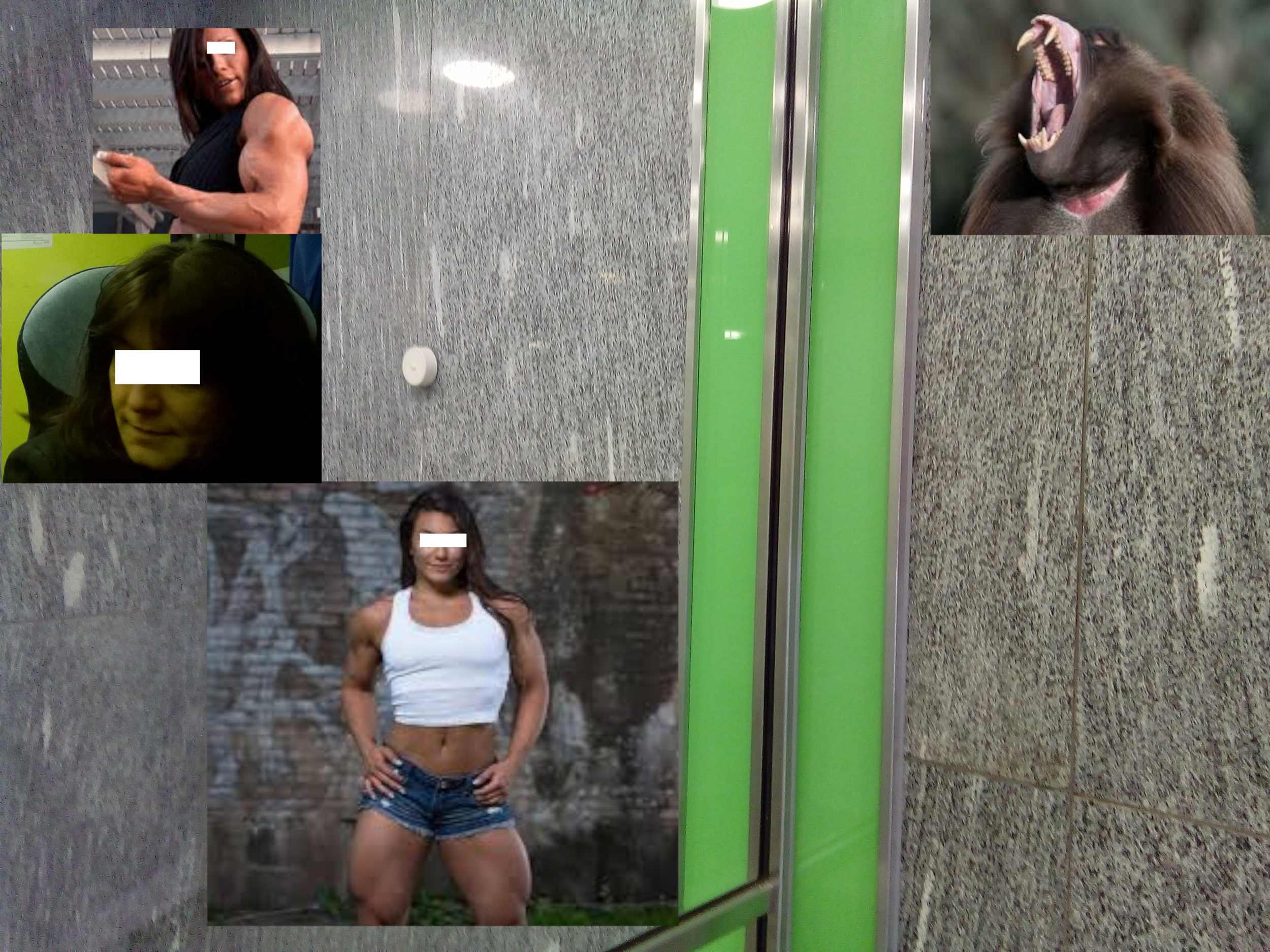 green lobby muscle ape.png