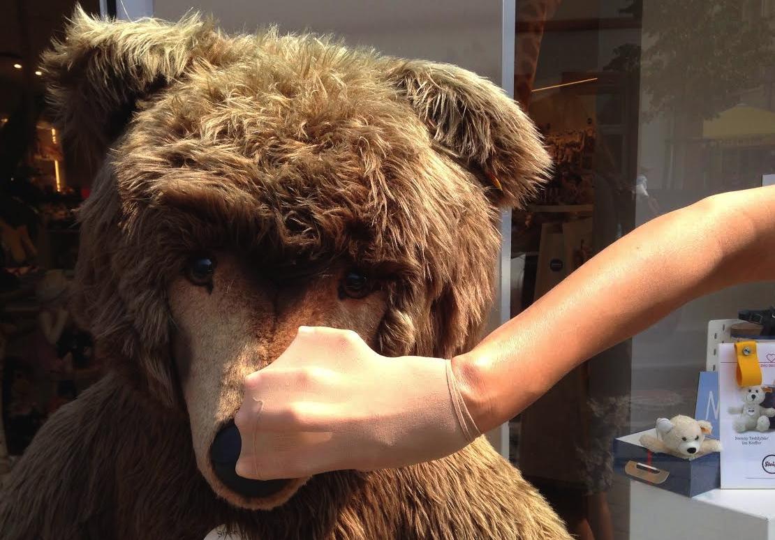 bear:hand 2.png