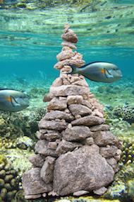 Rocks stay submerged/La goccia scava la roccia