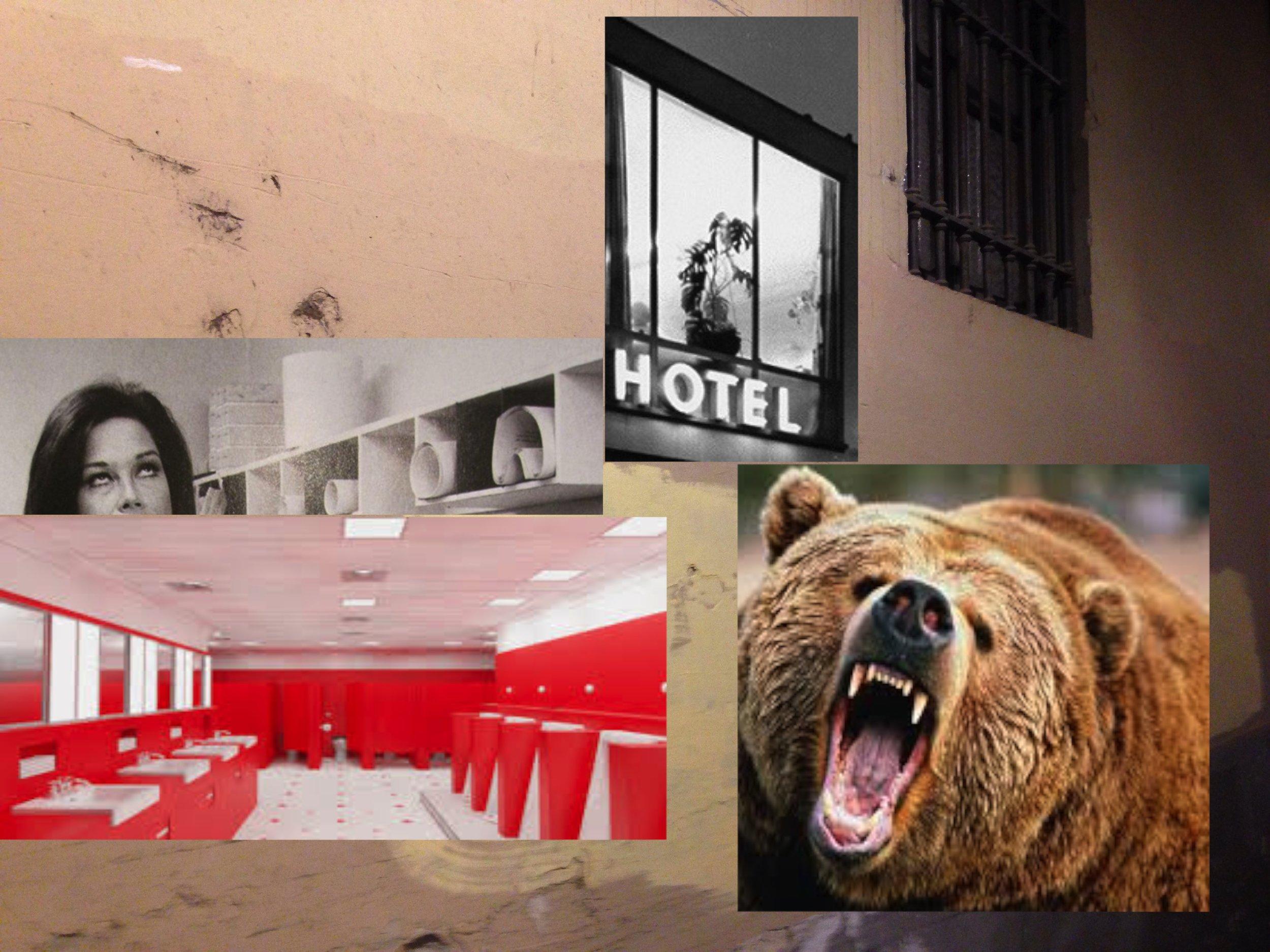 bear hotel.jpg