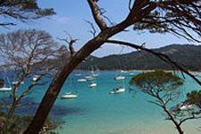Boats surround the Hyeres EAT.PRAY.MOVE Yoga Retreats | Provence, France